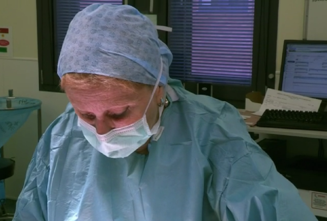 elaine sassoon, female plastic surgeon based in Norwich
